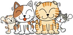 sグローバル猫